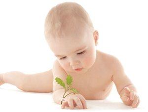 bébé-ecolo